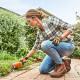Nůžky zahradní akumulátorové STIHL HSA 26